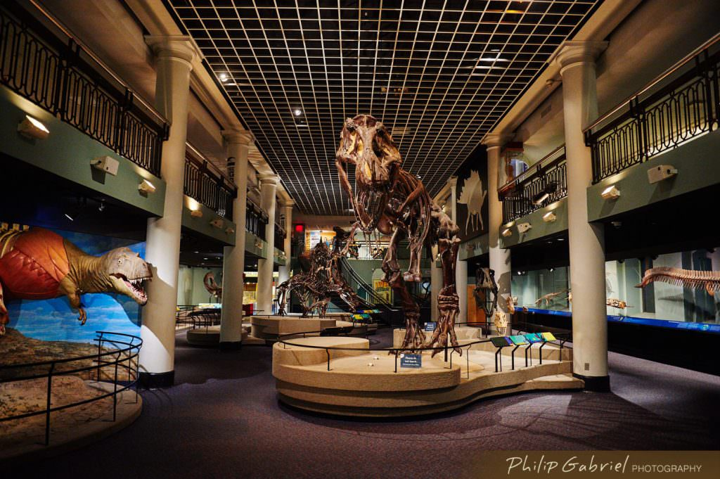 Architecture Interior Academy of Natural Sciences Drexel University Philadelphia Pennsylvania Dinosaur Hall Exhibit Photographed by Philip Gabriel Photography